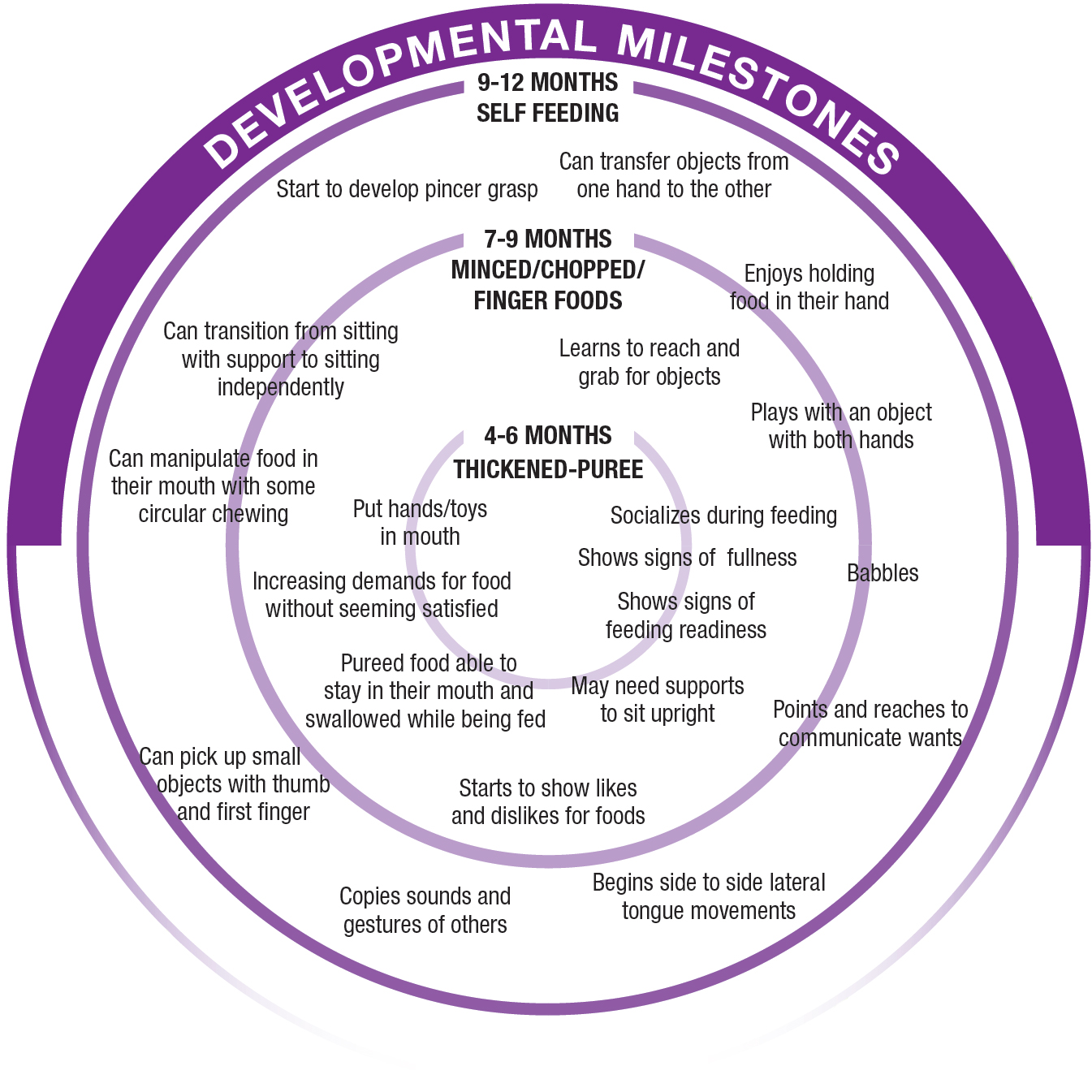 A circular diagram depicting developmental milestones in baby's first year. Around 4-6 months: thickened-puree Around 7-9 months: minced/chopped/finger foods. Around 9-12 months: self-feeding. Early milestones around 4-6 months include: socializes during feeding, shows signs of fullness, shows signs of feeding readiness, may need supports to sit upright, pureed food able to stay in their mouth and swallowed while being fed, increasing demands for food without seeming satisfied, put hands/toys in mouth. Later milestones, between 6-12 months: learns to reach and grab objects, enjoys holding food in their hand, starts to show likes and dislikes for food, babbles, points and reaches to communicate wants, begins side to side lateral tongue movements, copies sounds and gestures of others, starts to show likes and dislikes for foods, can pick up small objects with thumb and first finger, can manipulate food in their mouth with some circular chewing, can transition from sitting with support to sitting independently, start to develop pincer grasp, can transfer objects from one hand to the other.